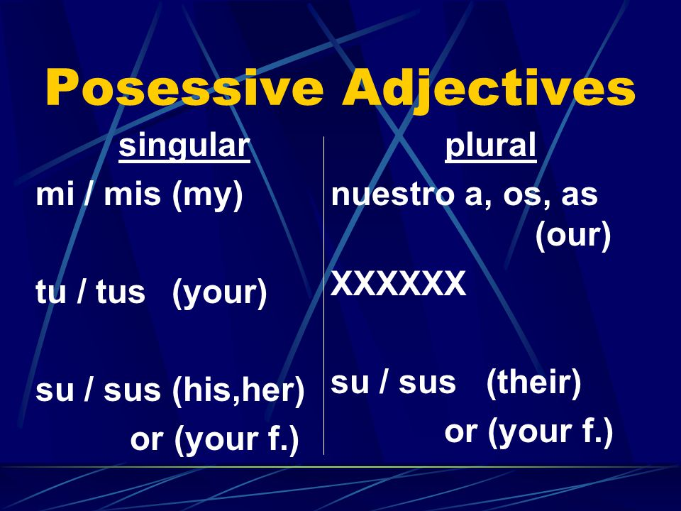 Posessive Adjectives singular mi / mis(my) tu / tus(your) su / sus (his,her) or (your f.) plural nuestro a, os, as (our) XXXXXX su / sus (their) or (your f.)