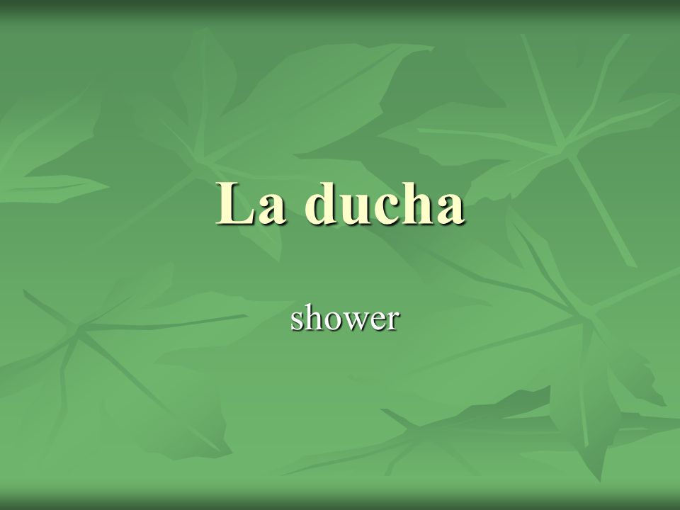 La ducha shower shower