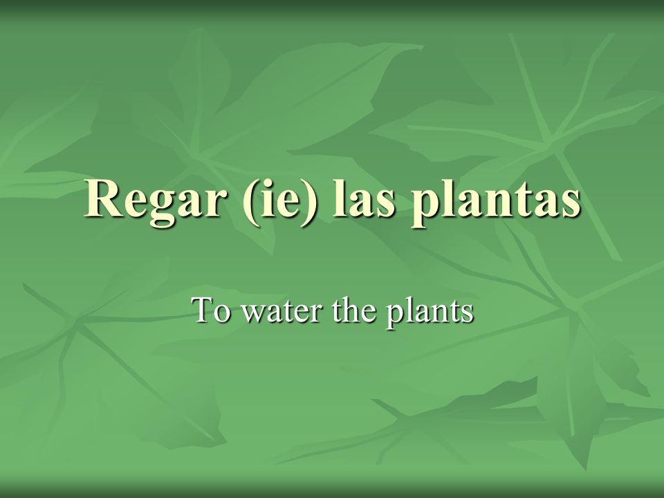 Regar (ie) las plantas To water the plants