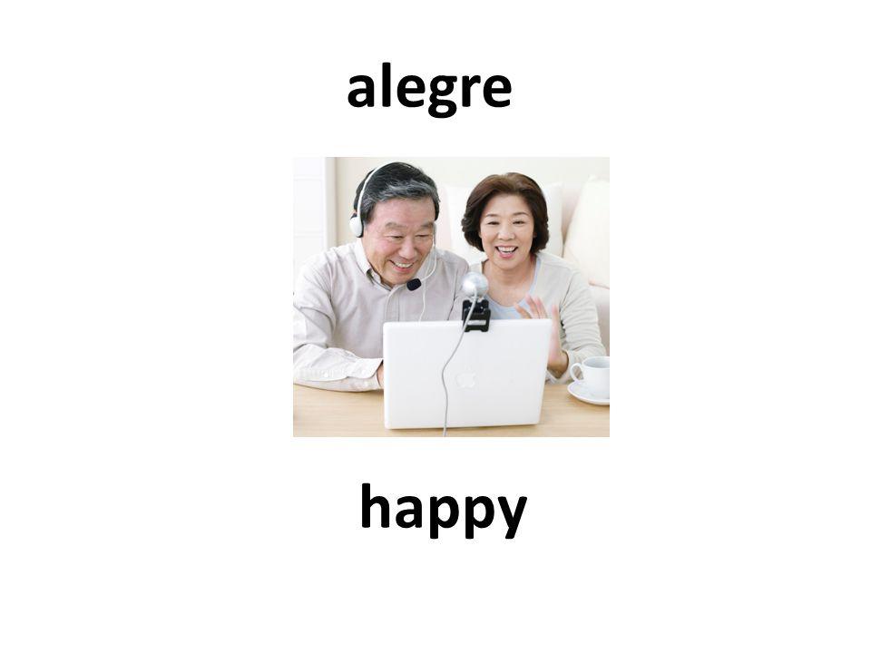 happy alegre