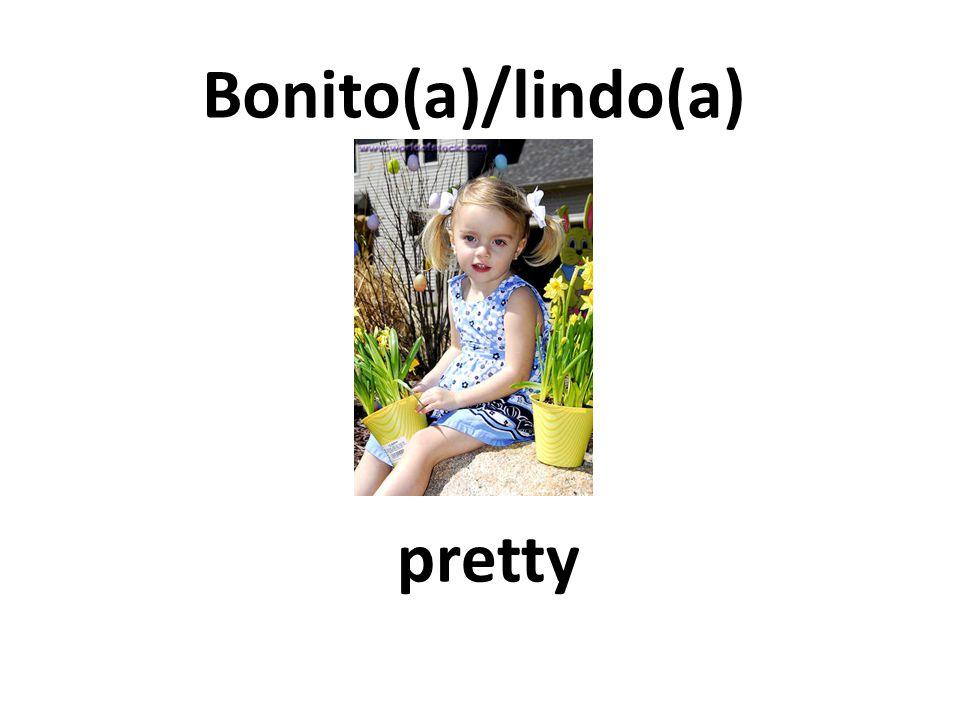 pretty Bonito(a)/lindo(a)
