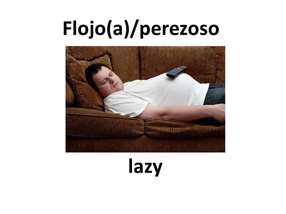lazy Flojo(a)/perezoso