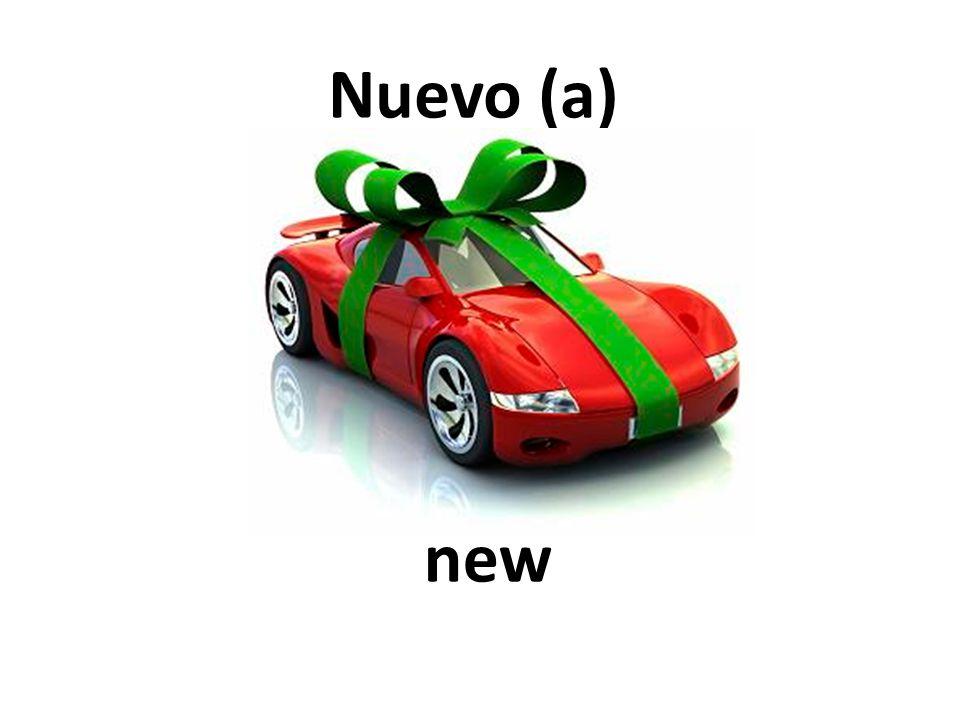 new Nuevo (a)
