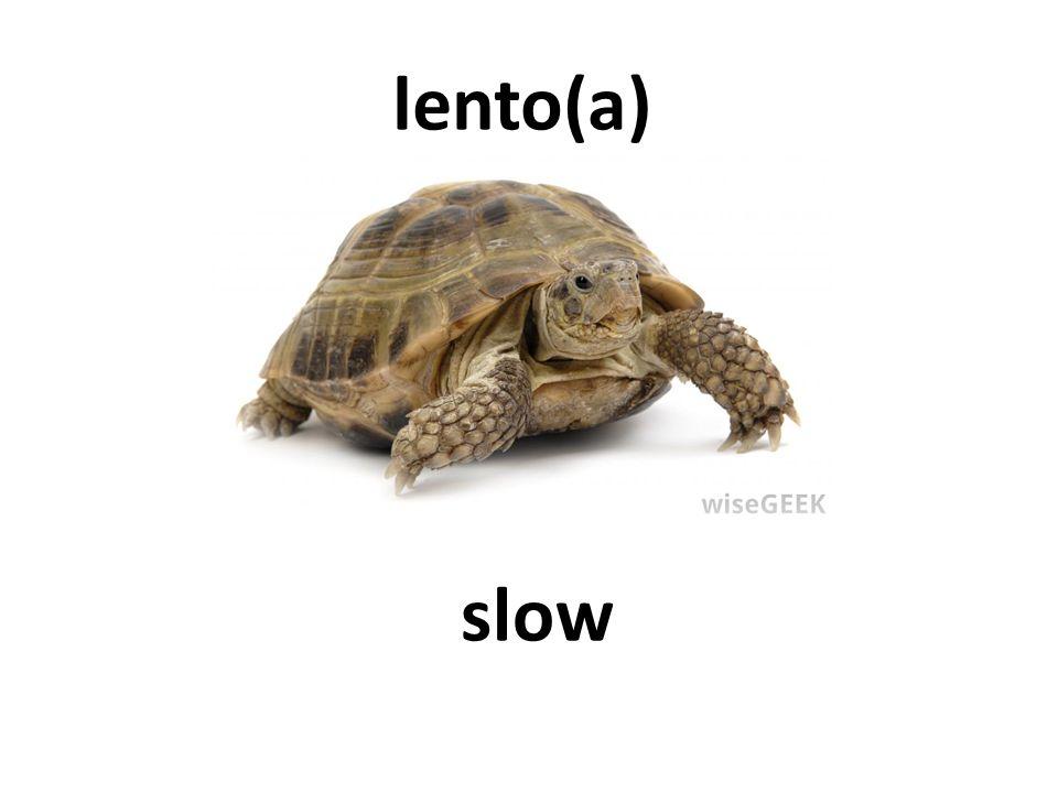 slow lento(a)