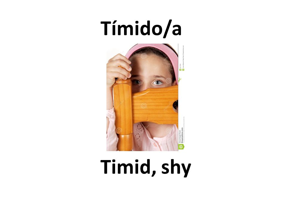 Timid, shy Tímido/a