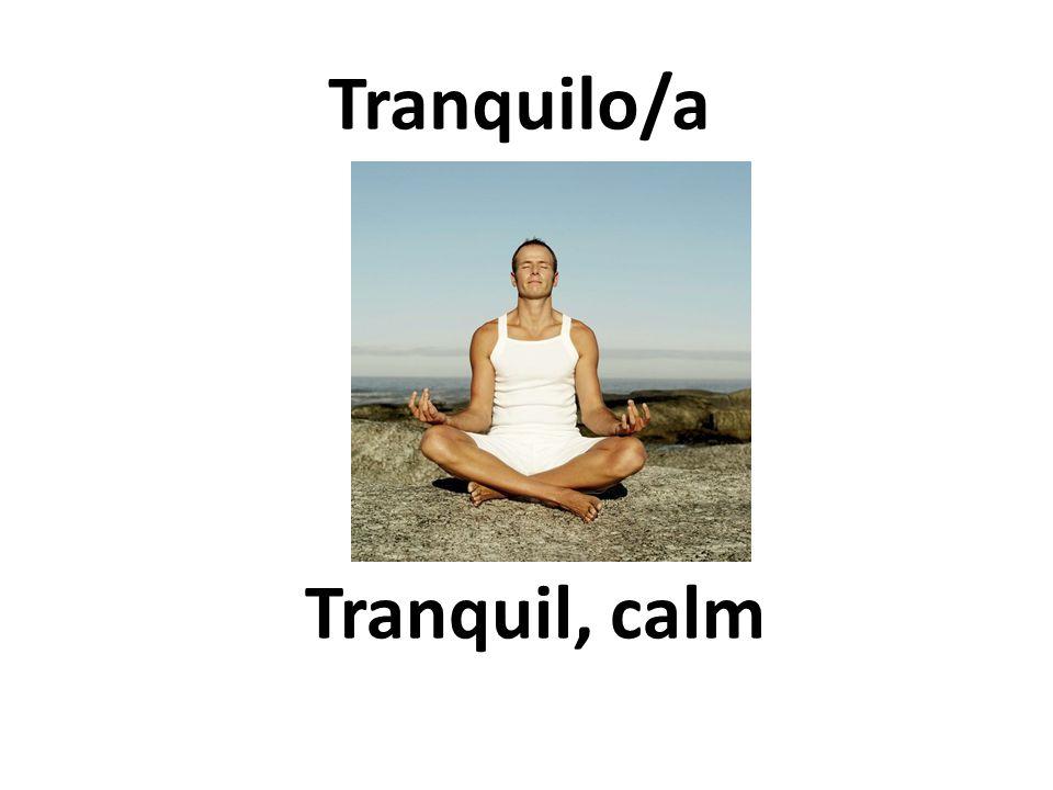 Tranquil, calm Tranquilo/a