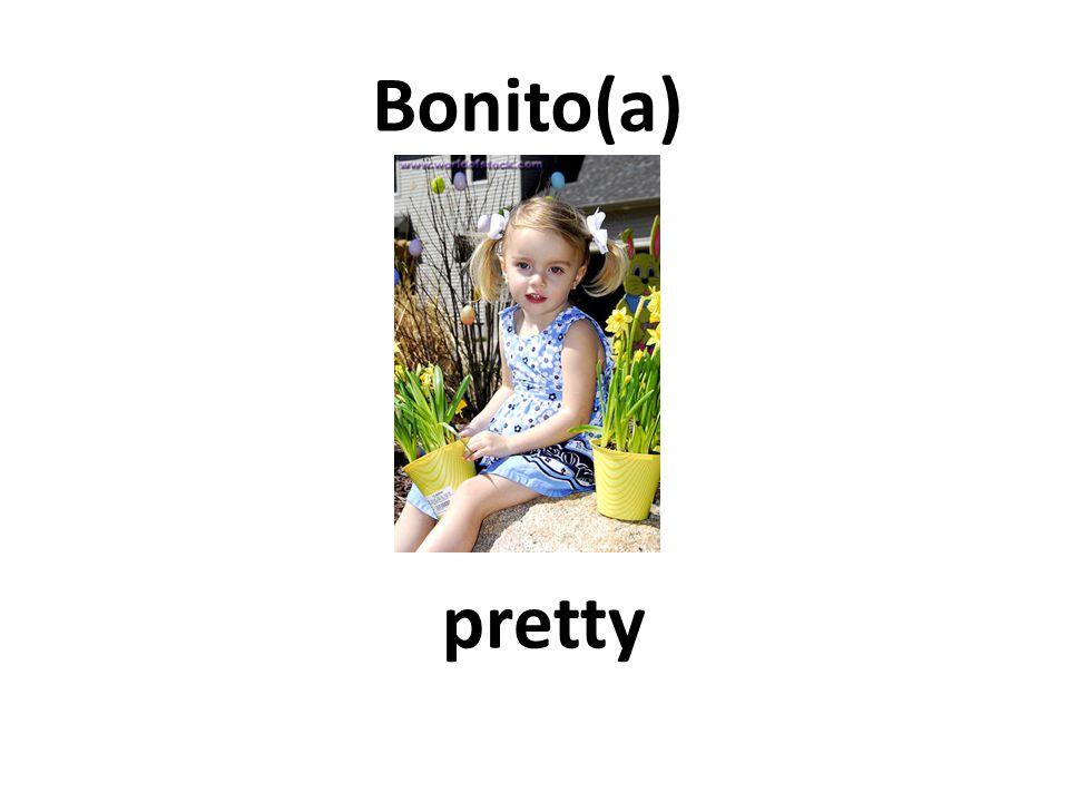 pretty Bonito(a)