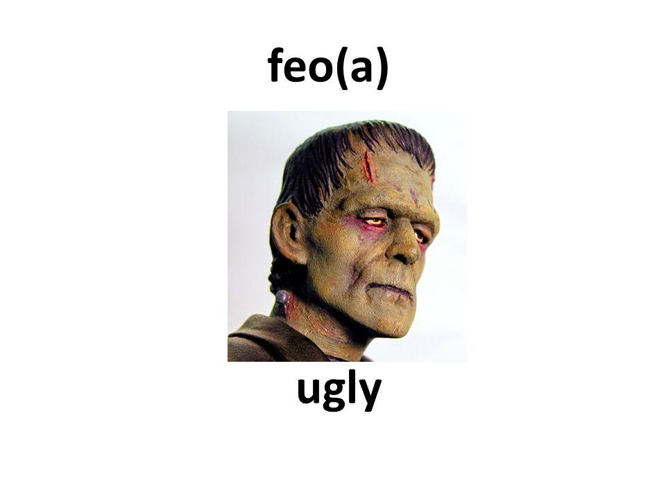 ugly feo(a)