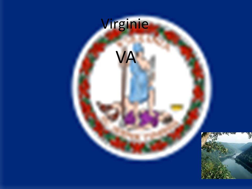 Virginie VA