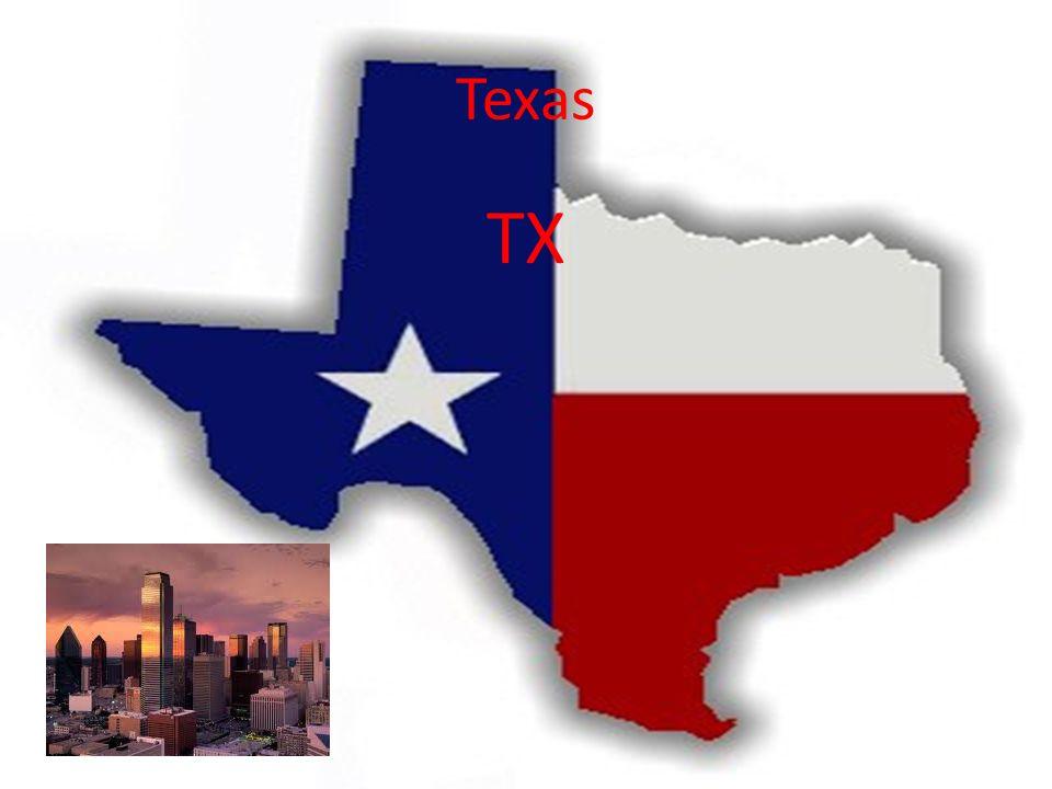 Texas TX