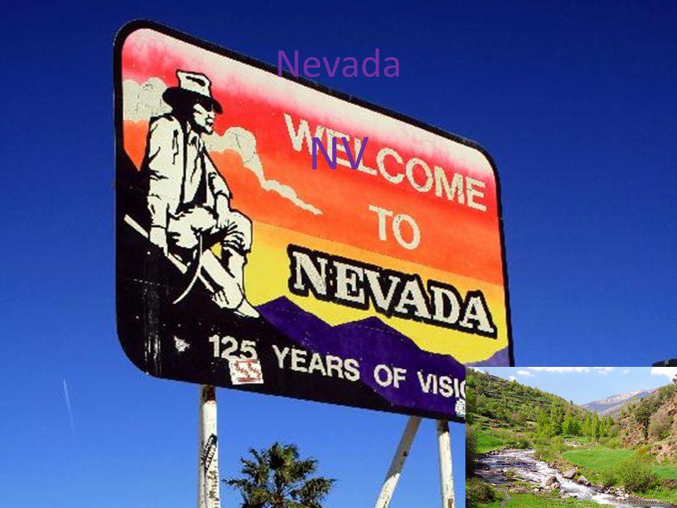 Nevada NV