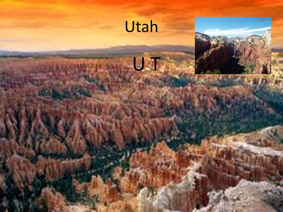 Utah U T