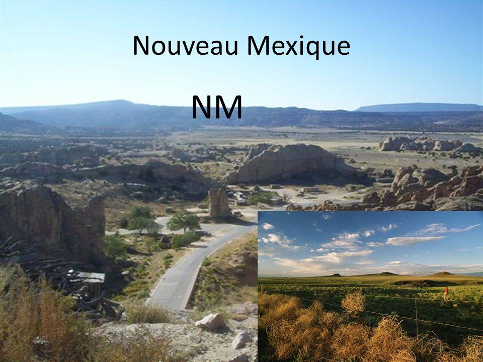 Nouveau Mexique NM