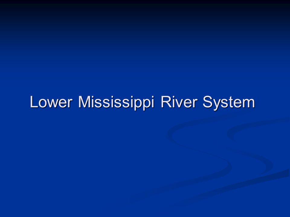 Lower Mississippi River System