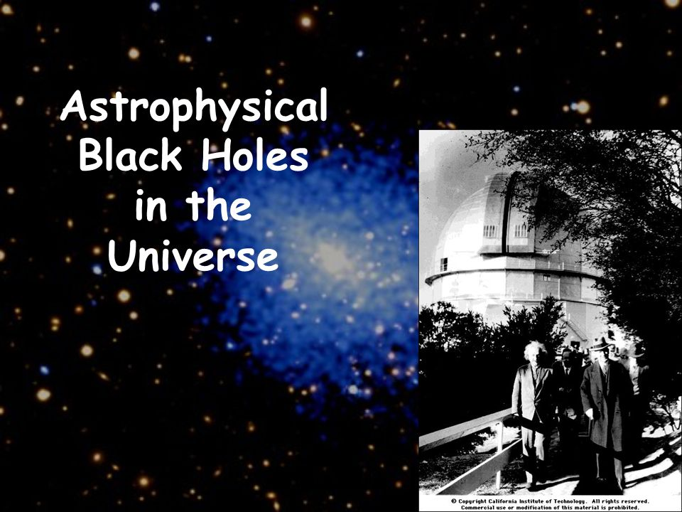 Astrophysical Black Holes in the Universe
