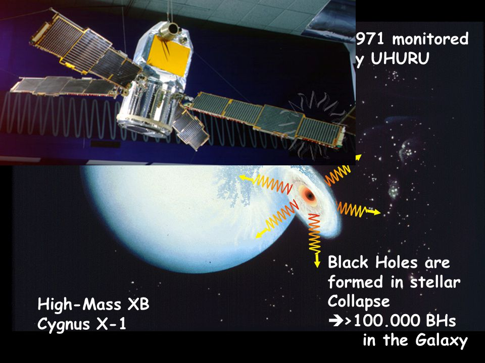 High-Mass XB Cygnus X-1 Black Holes are formed in stellar Collapse  >100.000 BHs in the Galaxy 1971 monitored by UHURU