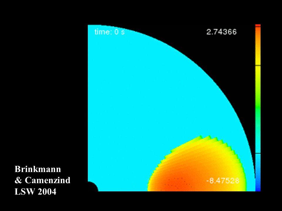 Brinkmann & Camenzind LSW 2004