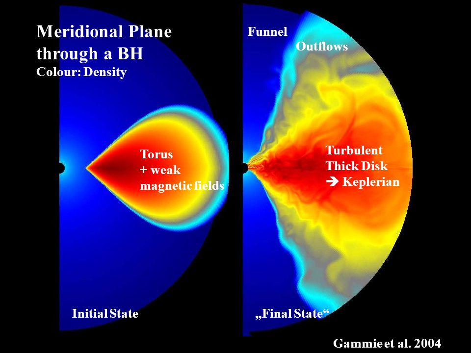 "Initial State ""Final State Meridional Plane through a BH Colour: Density Torus + weak magnetic fields Turbulent Thick Disk  Keplerian Gammie et al."