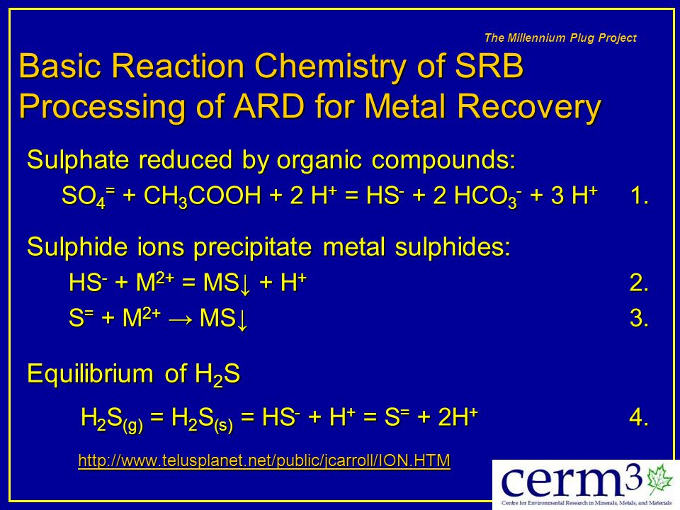 The Millennium Plug Project Basic Reaction Chemistry of SRB Processing of ARD for Metal Recovery Sulphate reduced by organic compounds: SO 4 = + CH 3