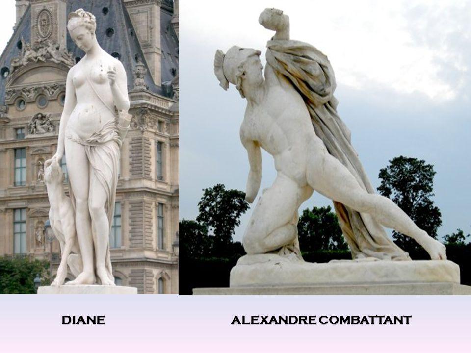 DIANE ALEXANDRE COMBATTANT