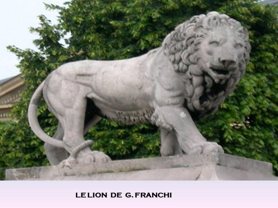 LE LION DE G. FRANCHI