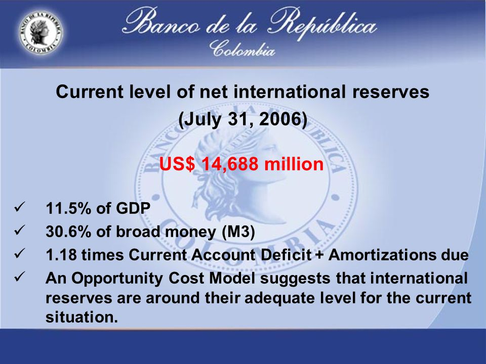 Current level of net international reserves (July 31, 2006) US$ 14,688 million 11.5% of GDP 30.6% of broad money (M3) 1.18 times Current Account Deficit + Amortizations due An Opportunity Cost Model suggests that international reserves are around their adequate level for the current situation.