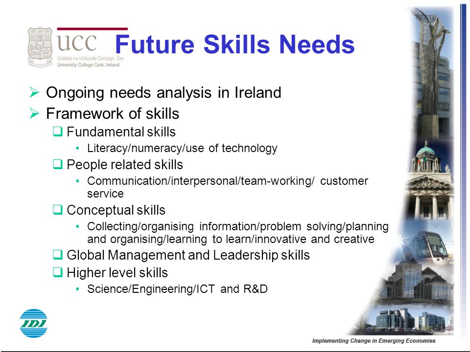 Future Skills Needs  Ongoing needs analysis in Ireland  Framework of skills  Fundamental skills Literacy/numeracy/use of technology  People related skills Communication/interpersonal/team-working/ customer service  Conceptual skills Collecting/organising information/problem solving/planning and organising/learning to learn/innovative and creative  Global Management and Leadership skills  Higher level skills Science/Engineering/ICT and R&D
