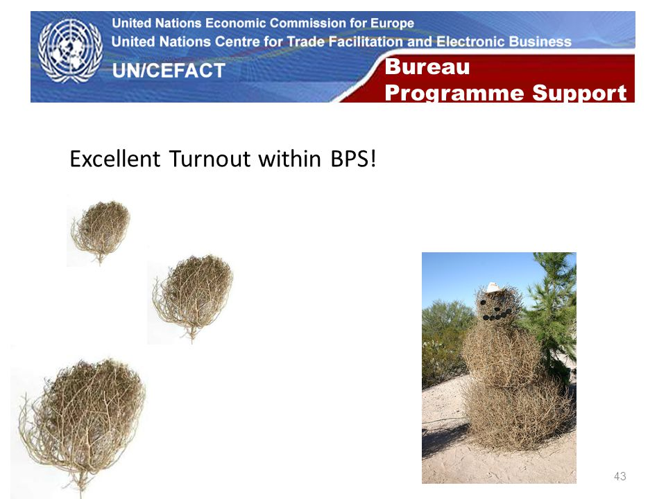 UN Economic Commission for Europe 43 Bureau Programme Support Excellent Turnout within BPS!