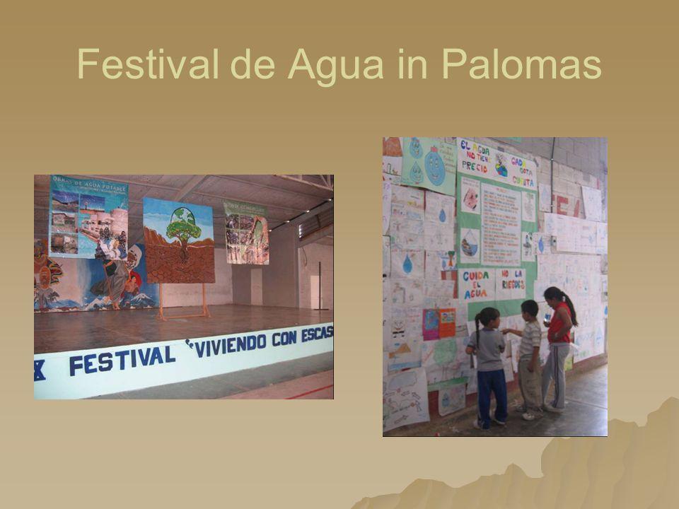 Festival de Agua in Palomas