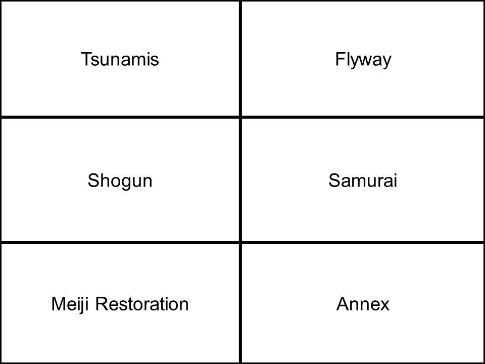TsunamisFlyway ShogunSamurai Meiji RestorationAnnex
