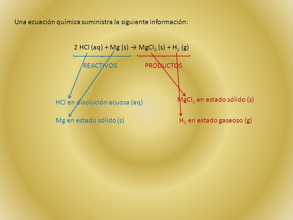 Una ecuación química suministra la siguiente información: 2 HCl (aq) + Mg (s) → MgCl 2 (s) + H 2 (g) REACTIVOSPRODUCTOS HCl en disolución acuosa (aq) Mg en estado sólido (s) MgCl 2 en estado sólido (s) H 2 en estado gaseoso (g)