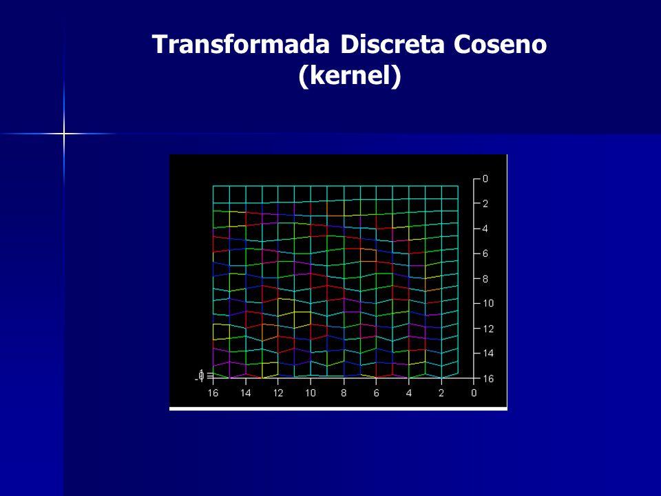 Transformada Discreta Coseno (kernel)