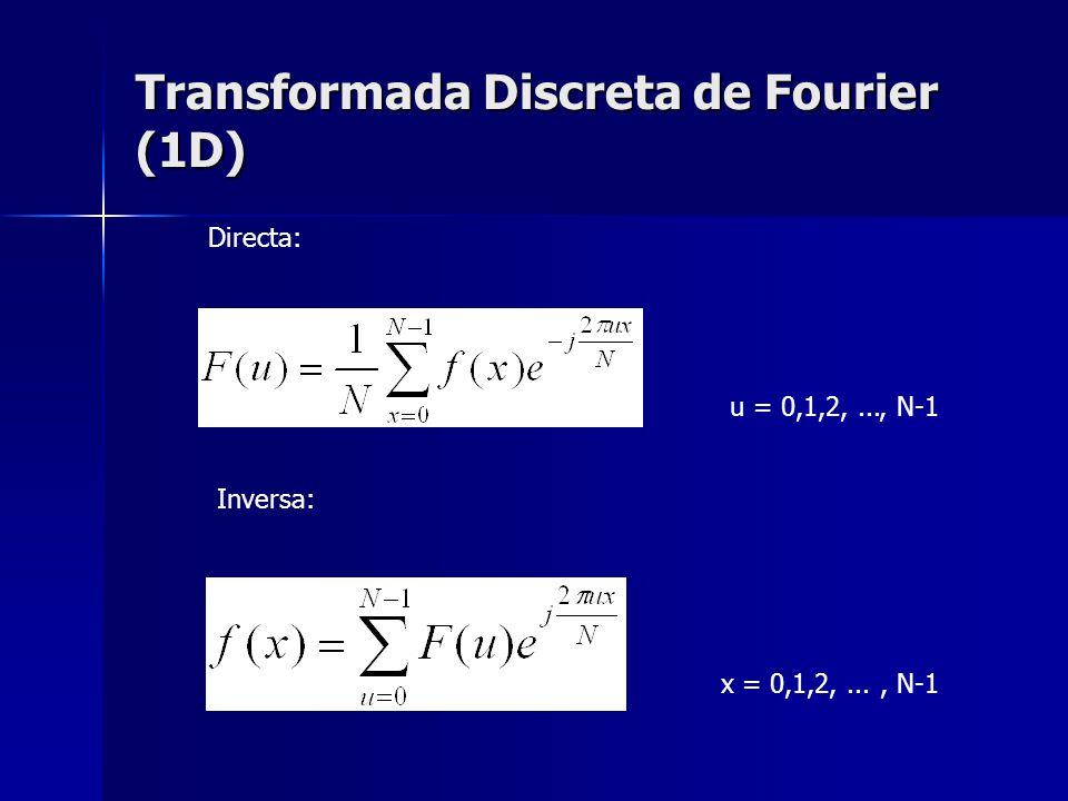 Transformada Discreta de Fourier (1D) u = 0,1,2,..., N-1 x = 0,1,2,..., N-1 Directa: Inversa:
