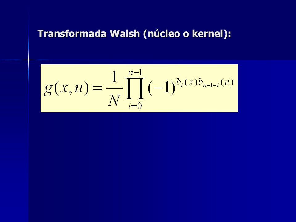 Transformada Walsh (núcleo o kernel):