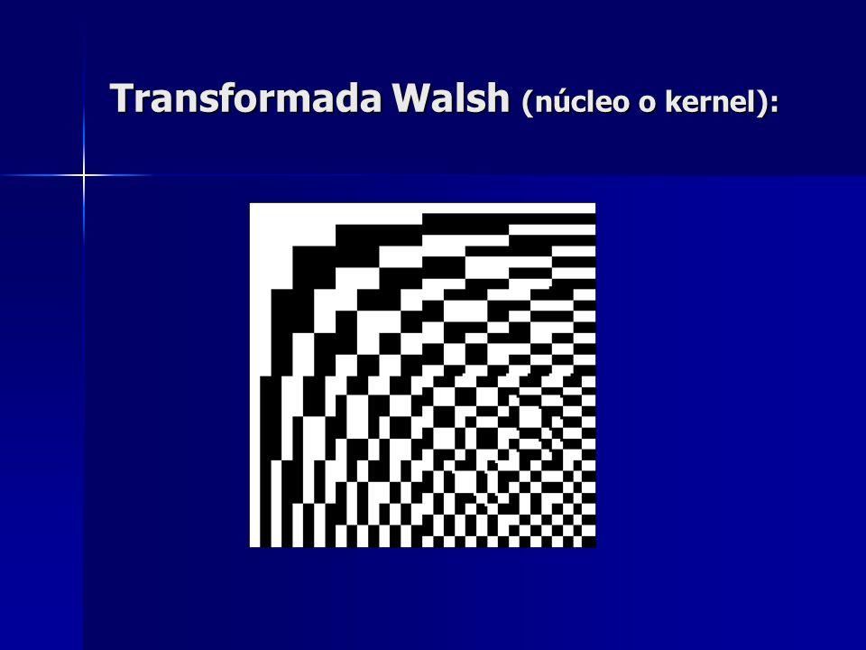 Transformada Walsh http://www.mandala.co.uk/fwt/plugin/ index.html http://www.mandala.co.uk/fwt/plugin/ index.html http://www.mandala.co.uk/fwt/plugin/ index.html http://www.mandala.co.uk/fwt/plugin/ index.html