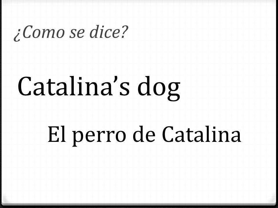 ¿Como se dice? Catalina's dog El perro de Catalina