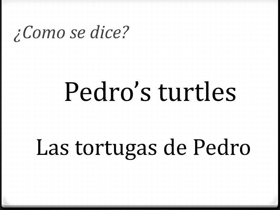 ¿Como se dice? Pedro's turtles Las tortugas de Pedro