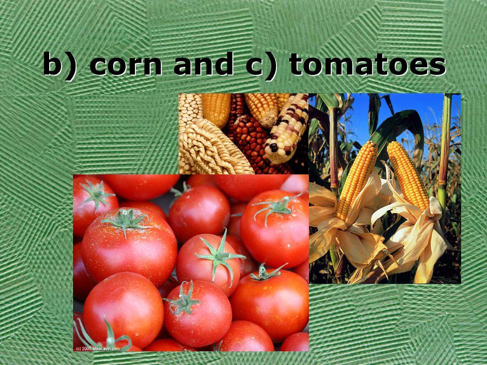 b) corn and c) tomatoes
