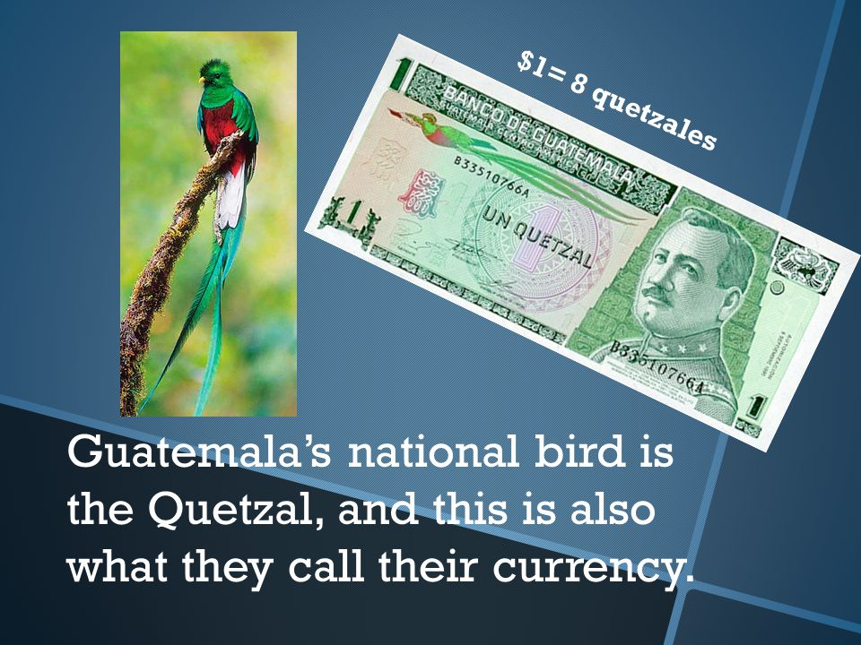Guatemala's national bird is the Quetzal, and this is also what they call their currency.