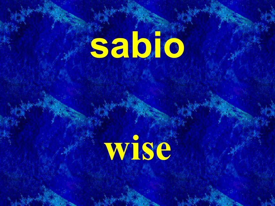sabio wise