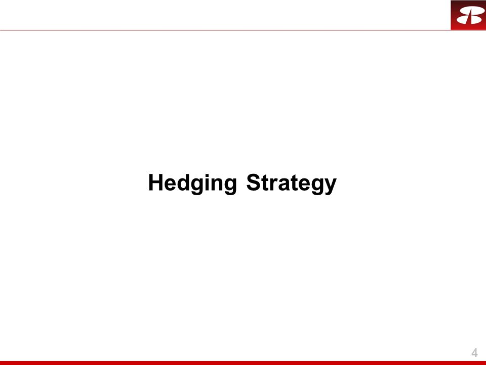 4 Hedging Strategy