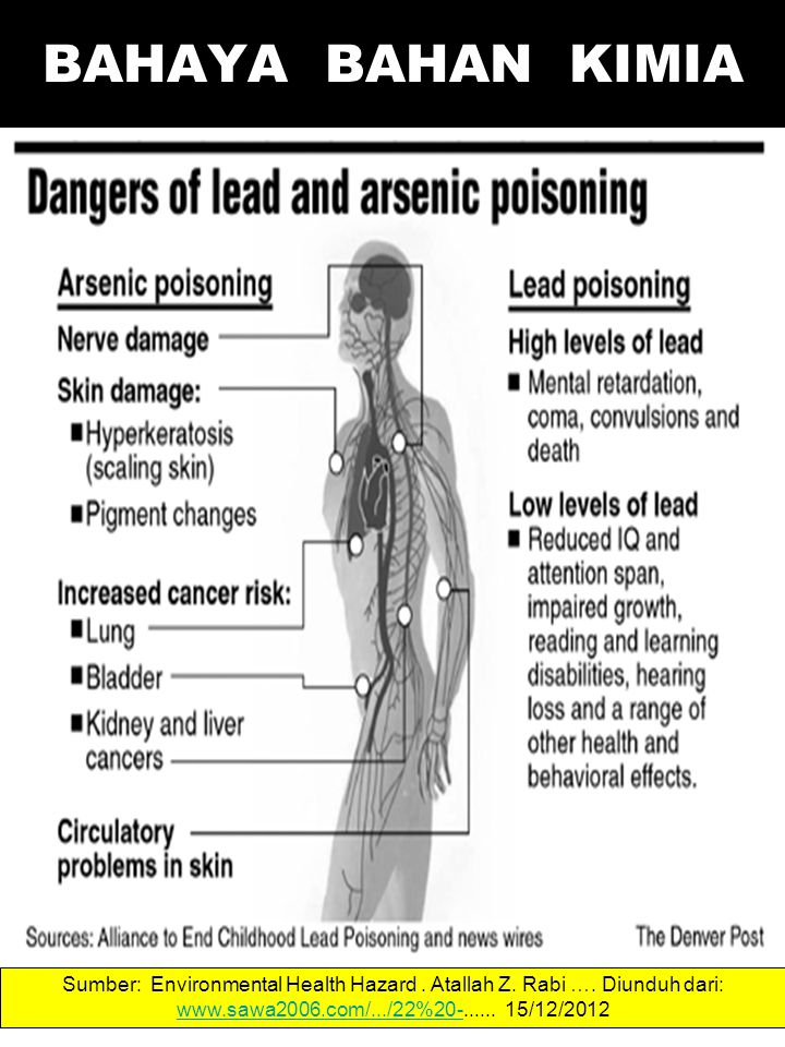 Sumber: Environmental Health Hazard. Atallah Z. Rabi ….