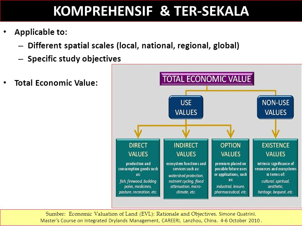 Applicable to: – Different spatial scales (local, national, regional, global) – Specific study objectives Total Economic Value: KOMPREHENSIF & TER-SEKALA Sumber: Economic Valuation of Land (EVL): Rationale and Objectives.