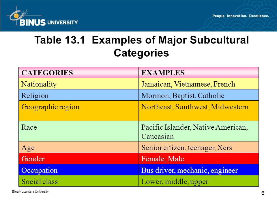 Bina Nusantara University 6 Table 13.1 Examples of Major Subcultural Categories CATEGORIESEXAMPLES NationalityJamaican, Vietnamese, French ReligionMor