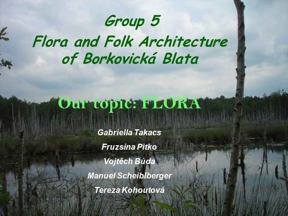 Group 5 Flora and Folk Architecture of Borkovická Blata Our topic: FLORA Gabriella Takacs Fruzsina Pitko Vojtěch Búda Manuel Scheiblberger Tereza Kohoutová