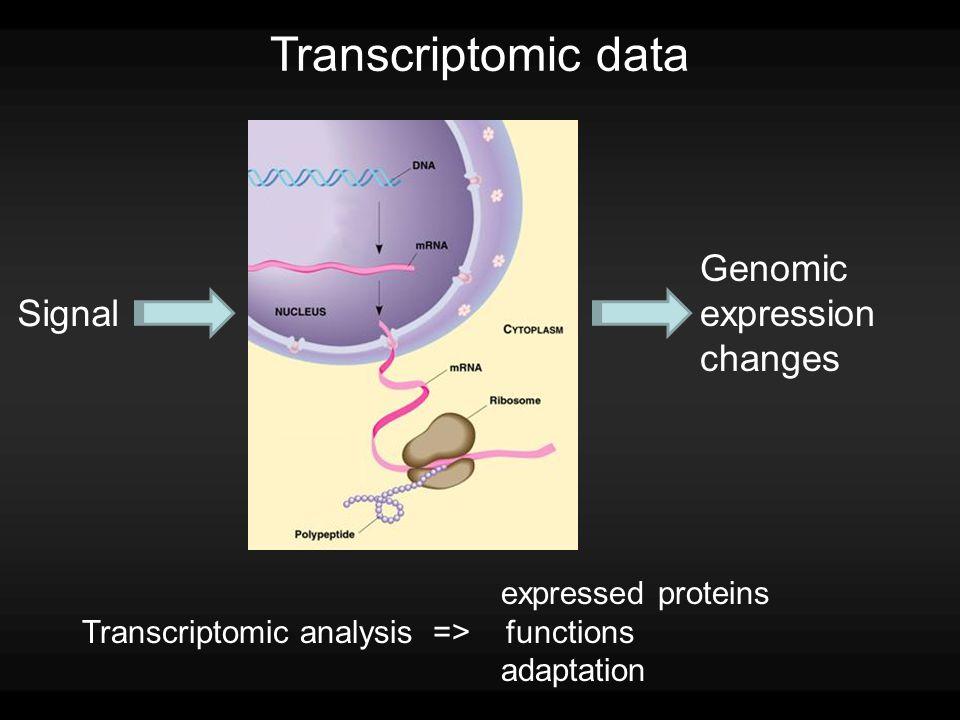 Transcriptomic data Signal Genomic expression changes expressed proteins Transcriptomic analysis => functions adaptation