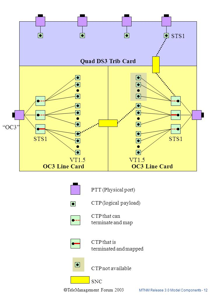 MTNM Release 3.0 Model Components - 12  TeleManagement Forum 2003 Quad DS3 Trib Card OC3 Line Card STS1 VT1.5 STS1 VT1.5 STS1 OC3 PTT (Physical port) CTP (logical payload) CTP that can terminate and map CTP that is terminated and mapped CTP not available SNC