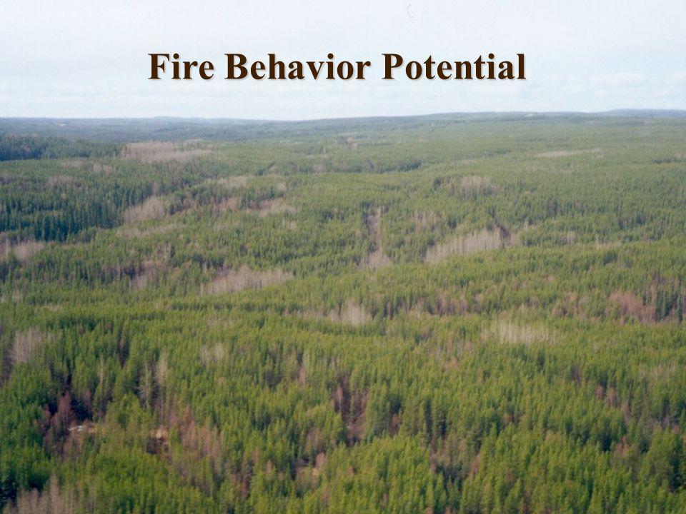 Fire Behavior Potential