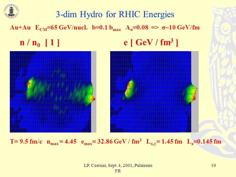 LP. Csernai, Sept. 4, 2001, Palaiseau FR 18 3-dim Hydro for RHIC Energies Au+Au E CM =65 GeV/nucl.