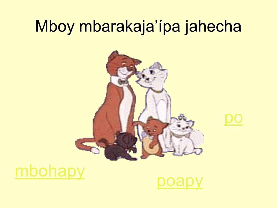 Mboy mbarakaja'ípa jahecha po poapy mbohapy